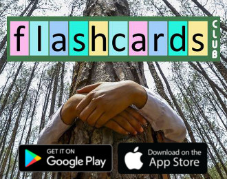 Flashcards Club app